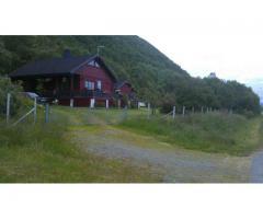 Hytte til salgs på Sannes (Andøya)