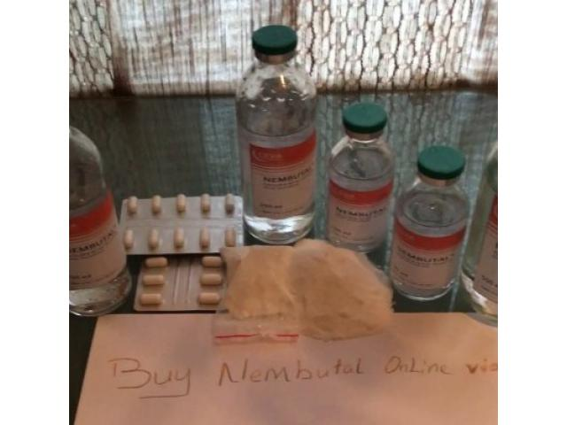 NEMBUTAL pulver, piller, væske