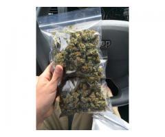 Billige medisinske marihuana og cannabisolje