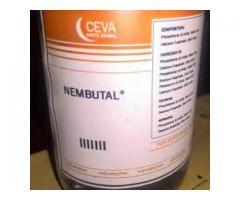 Pentobarbitalnatrium / Nembutal renhet er garantert 99,8% Minimum. vi selger :-