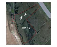 Investment 736ha land for tourism, aquaculture and agriculture in the Danube Delta, Romania, Europe